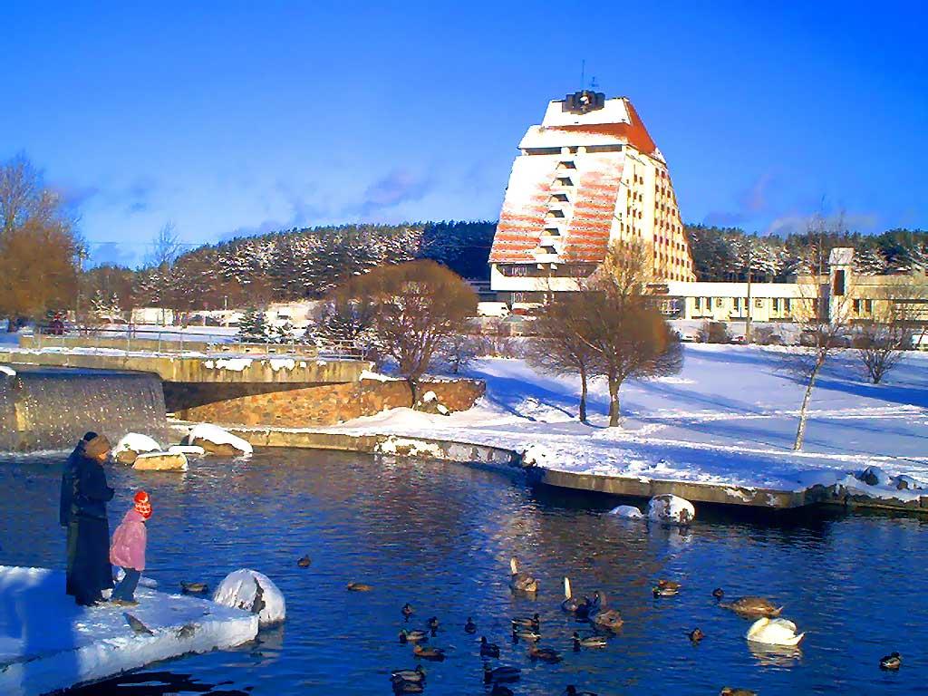 Морозный зимний день. Понятно, что подарки для водоплавающих - там ...
